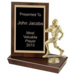 Standing Plaque, 6 Football Trophy Awards