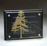 Black Glass Plaque with Glass Layer Recognition Plaques
