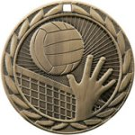 Volleyball FE Iron Medal Volleyball Trophy Awards