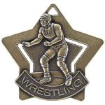 Wrestling Star Wrestling Trophy Awards